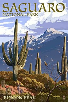 Saguaro National Park Arizona  Rincon Peak 9x12 Art Print Wall Decor Travel Poster *** Read more at the image link. (This is an affiliate link)