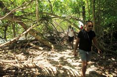cahuita national park snorkeling hiking tour hiking   - Costa Rica