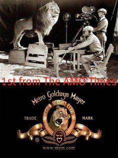 The original MGM Lion ate the trainer and 2 assistants after the day the commercial was published. AND During this time, he survived 2 train wrecks, a flood in Mississippi, an earthquake in California, a fire, and a plane crash.