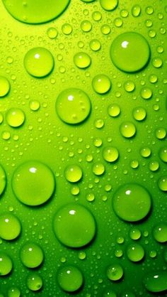 Lime Green Wallpaper Wallpapers) – Wallpapers and Backgrounds Iphone 5 Wallpaper, Widescreen Wallpaper, Wall Wallpaper, Mobile Wallpaper, Wallpaper Backgrounds, Desktop Wallpapers, Latest Wallpaper, Desktop Themes, Plain Wallpaper