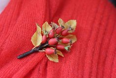 Red Jewelry Brooch Lover Polymer clay Flower Women Brooch Rosehips Botanical Jewelry Nature Autumn Accessories Leaf brooch Gift Coworker