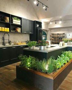 herb garden at your finger tips