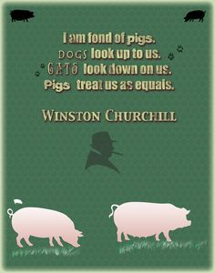 I am fond of pigs.  Dogs look up to us.  Cats look down on us.  Pigs treat us as equals.  -Winston Churchill