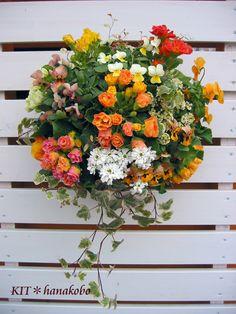プリムラのハンギングバスケット - ハンギングバスケット・寄せ植えのKIT*花工房|広島県福山市
