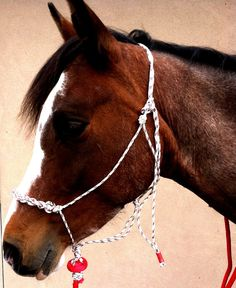 Soft Thin Rope Halter Braided Noseband Included by SimpleLoops, $15.00