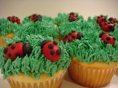 Lady bug picnic food #perfectpicnic #joules