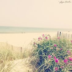 Lauren Conrad's photo diary from her summer vacation to Nantucket