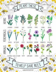 Plant fir bees!