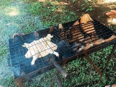 Pulled Pork Gasgrill Jagung : Siska marcus chilicali on pinterest