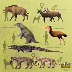 Prehistoric Kingdom | Official Blog for Prehistoric Kingdom | Page 2