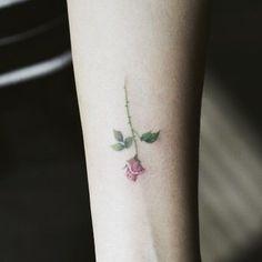 Small rose so cute☺️