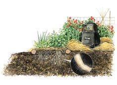Garden soil is happier and healthier when it is disturbed less. Add more mulch and use non-tilling methods to plant crops and you will protect the delicate and beneficial organisms that provide more nutrients to crop root systems.data-pin-do=