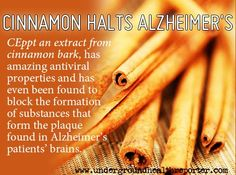 Cinnamon halt alzheimers