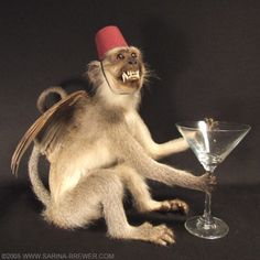A taxidermy sculpture of mine that was just featured in an article by Dirge Magazine about the resurgence of age-old art forms and handcrafted objects in a world where so much of our daily existence. Winged Monkeys, Fantasy Words, Flying Monkey, Bird Wings, Stuff And Thangs, Old Art, Natural World, Rogues, Art Forms