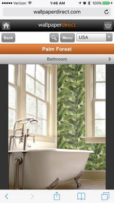 Wallpaper direct.com palm forest