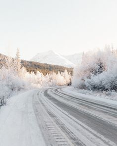Image de winter, snow, and christmas Beautiful World, Beautiful Places, Beautiful Pictures, Wild At Heart, Winter Landscape, Spring Day, Adventure Is Out There, Winter Time, Winter Road