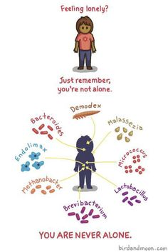 You are never alone. How they forgot to include the 2 most known normal flora in the human body (Staphyloccocus aureus and Escherichia coli) boggles my mind.