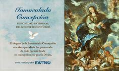 La Inmaculada Concepción es la Fiesta Patronal de los Estados Unidos