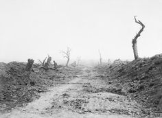 """Sept 11 1916: Road to Guillemont viewed from Waterlot Farm.""""straight,desolate, and swept by fire"""""""