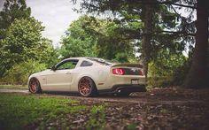 #Mustang 5.0 #Bagged #Stance #Slammed