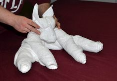 How to make a Towel Dog
