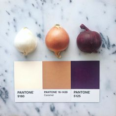 Eat your onions #pantoneposts by lucialitman
