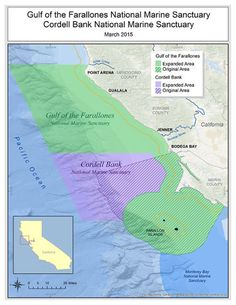 Under the dramatic move by the National Atmospheric and Oceanic Administration, the boundaries of the Gulf of the Farallones and Cordell Bank national marine sanctuaries expand from Bodega Bay to Point Arena, permanently banning offshore oil drilling along that stretch of the coast.