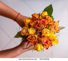 Bouquet of dried roses in hands. Hands holding a bouquet of dried roses of orange color