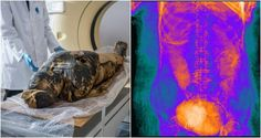 Scientists say 10 percent of mummies are found in the wrong coffin because of grave robbers — and that's likely what happened to the woman.Archeologists peer at the female mummy in her coffin.Wrapped …