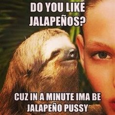 Gotta love these sloth memes