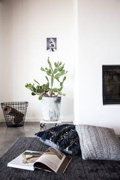 Home, Interior, House, Amanda, Shadforth, Oracle Fox, Wardrobe, Oracle Fox Closet, Amanda Shadforth Lounge Room, Marble Surfboard, Marble Coffee Table, Amanda Shadforth Artwork, Cactus