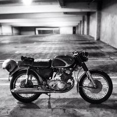 1966 Honda CB77. Cafe Racer