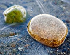 Nature stone wllpaper