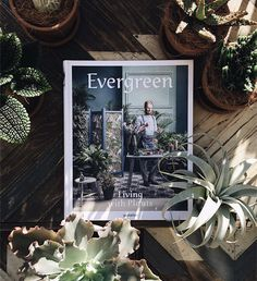 Six more weeks of winter won't be that bad. Catch some #urbangreenery in our recent release #EvergreenBook