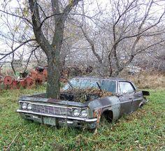 North Dakota: Abandoned White Homelands... - Stormfront