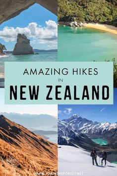 One of the best things to do in New Zealand is taking in the nature on a hike, and while there are so many incredible places to go hiking, there are a few that stand out from the crowd. New Zealand Itinerary, New Zealand Travel Guide, Ecuador, Alaska, Hiking Guide, Hiking Trails, Visit New Zealand, Great Walks, Travel Guides