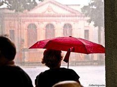 Aguardando a chuva das três horas passar. Ao fundo um prédio secular do Hospital da Santa Casa de Misericórdia da cidade de Belém.  Belém - Pará - Brasil.