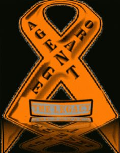 Connecting families of veterans of the Vietnam War and AGENT ORANGE The Legacy Of Veteran's Exposed To Agent Orange-Birth Defects, Illnesses,...