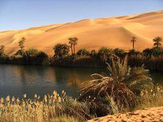 bousaada-ksour-et-oasis