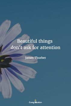 Beautiful things don't ask for attention. James Thurber