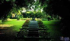"""حديقة """" بريف"""" تفتح أبوابها للجمهور للاستمتاع…: فتحت حديقتا الأخوان بيفيس وجيوفري باوا، أبوابهما للجمهور، وأصبح اسم باوا ضمن عظماء القرن…"""