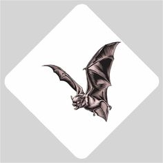 "This scary flying vampire bat design is sure to freak you out! Show off how dark and Gothic you really are. This design would make a great gift for a friend or yourself Our high quality Car Window Sign is printed on 12 pt card stock paper, includes free UV shiny coating on the front and back side, measures approximately 5 1/2"" x 5 1/2""."