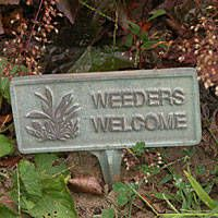 Weeders Welcome -:)  You'll want to pull up some of the stuff you planted, by praying and asking for forgiveness.