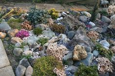 verschiedene Steinarten und größen
