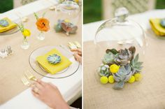 Have I mentioned that I love incorporating succulents into wedding decor!