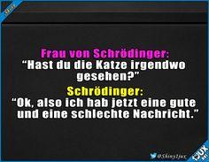 Da gab's bestimmt Ärger! #Schrödinger #Witze #lustig #funny #Katze
