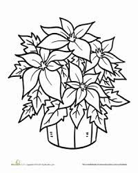 Winter Christmas Preschool Holiday Worksheets Poinsettia Plant Coloring Page