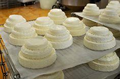 Queso Montebore - Italia Producido con leche cruda mezclada (3/4 y 1/4 vaca ovejas) y cuajo natural, presenta una masa mirada ligeramente blanco con corteza áspera del color amarillo pajizo.