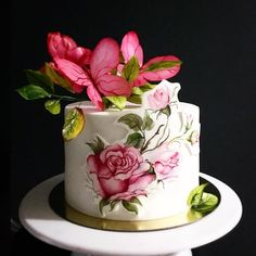 A sharp-edged cake made with hand-painted roses and wafer paper made butterflies containing spring themes. Beautiful Birthday Cake Images, Beautiful Cakes, Amazing Cakes, Paper Cake, Wafer Paper, Cake Art, Unique Cakes, Creative Cakes, Elegant Cakes