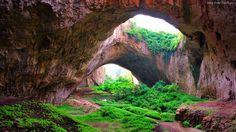 Jaskinia, Zieleń